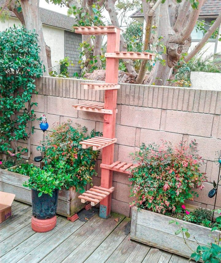 outdoor-cat-tree